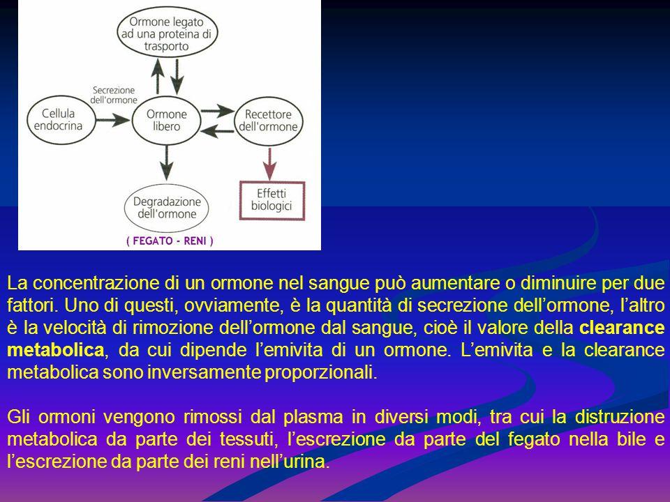 La concentrazione di un ormone nel sangue può aumentare o diminuire per due fattori. Uno di questi, ovviamente, è la quantità di secrezione dell'ormone, l'altro è la velocità di rimozione dell'ormone dal sangue, cioè il valore della clearance metabolica, da cui dipende l'emivita di un ormone. L'emivita e la clearance metabolica sono inversamente proporzionali.