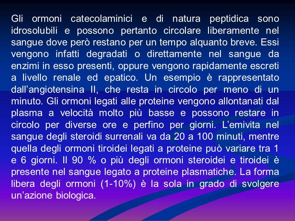 Gli ormoni catecolaminici e di natura peptidica sono idrosolubili e possono pertanto circolare liberamente nel sangue dove però restano per un tempo alquanto breve.
