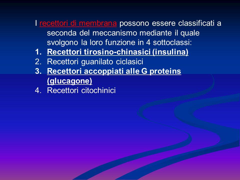 I recettori di membrana possono essere classificati a seconda del meccanismo mediante il quale svolgono la loro funzione in 4 sottoclassi: