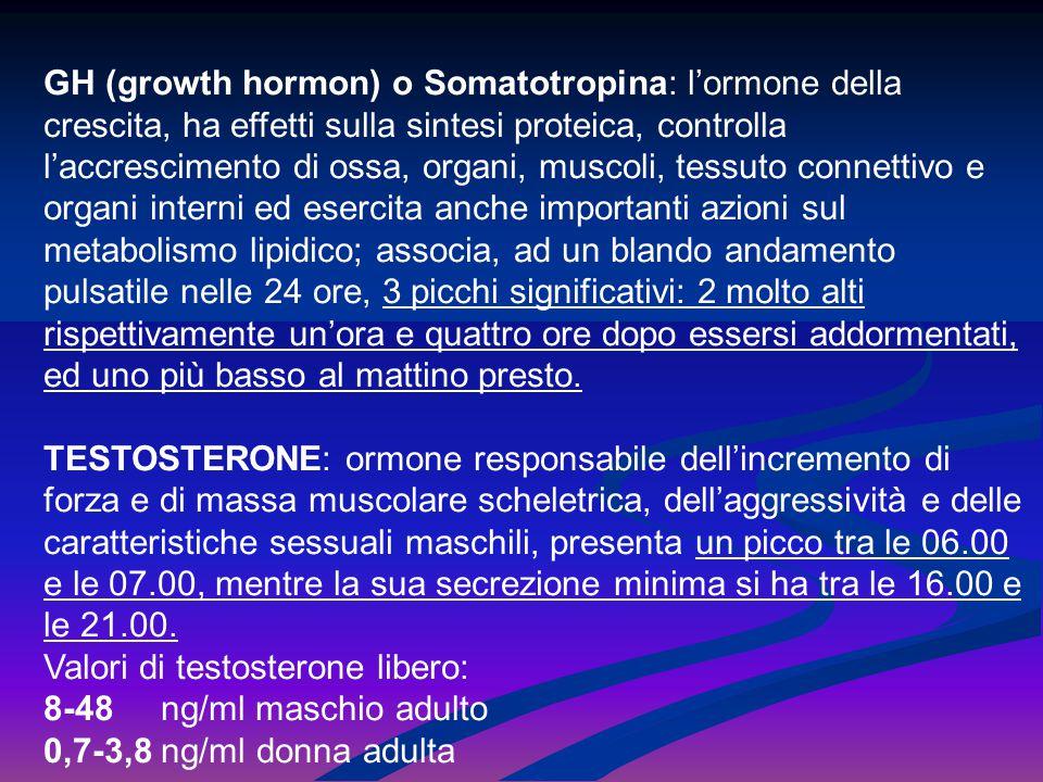 GH (growth hormon) o Somatotropina: l'ormone della crescita, ha effetti sulla sintesi proteica, controlla l'accrescimento di ossa, organi, muscoli, tessuto connettivo e organi interni ed esercita anche importanti azioni sul metabolismo lipidico; associa, ad un blando andamento pulsatile nelle 24 ore, 3 picchi significativi: 2 molto alti rispettivamente un'ora e quattro ore dopo essersi addormentati, ed uno più basso al mattino presto.