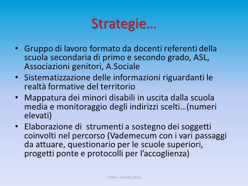 Strategie… Gruppo di lavoro formato da docenti referenti della scuola secondaria di primo e secondo grado, ASL, Associazioni genitori, A.Sociale.