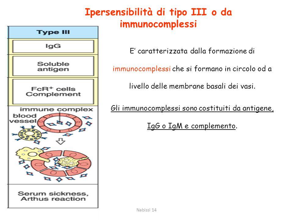 Ipersensibilità di tipo III o da immunocomplessi