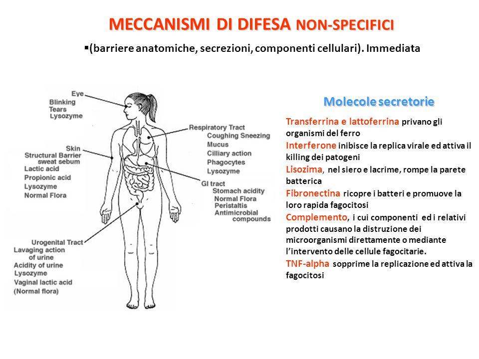 MECCANISMI DI DIFESA NON-SPECIFICI