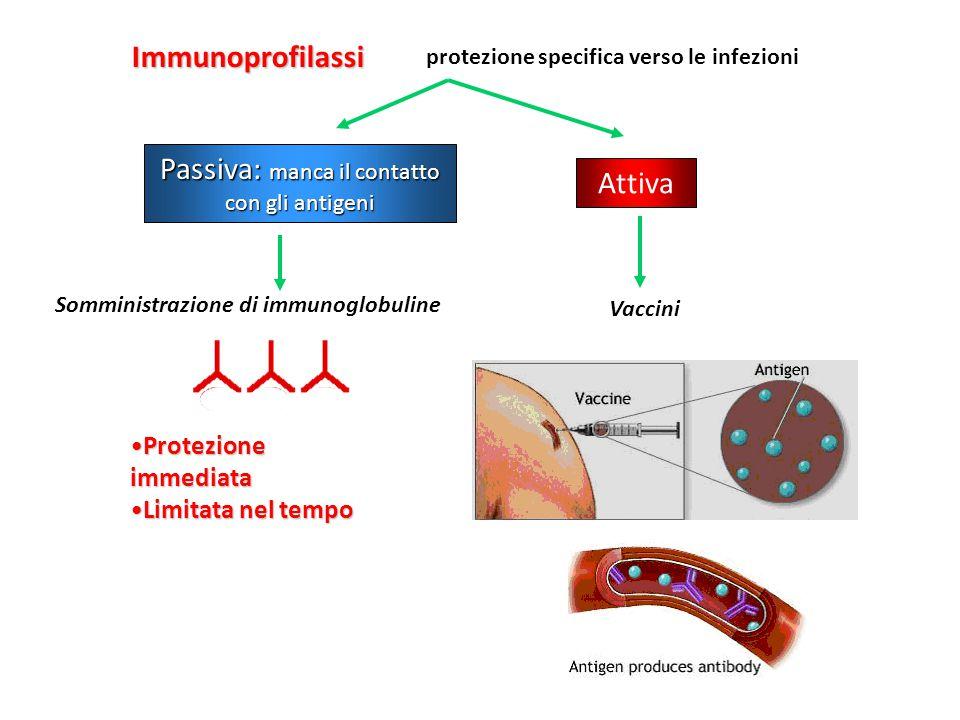 Passiva: manca il contatto con gli antigeni