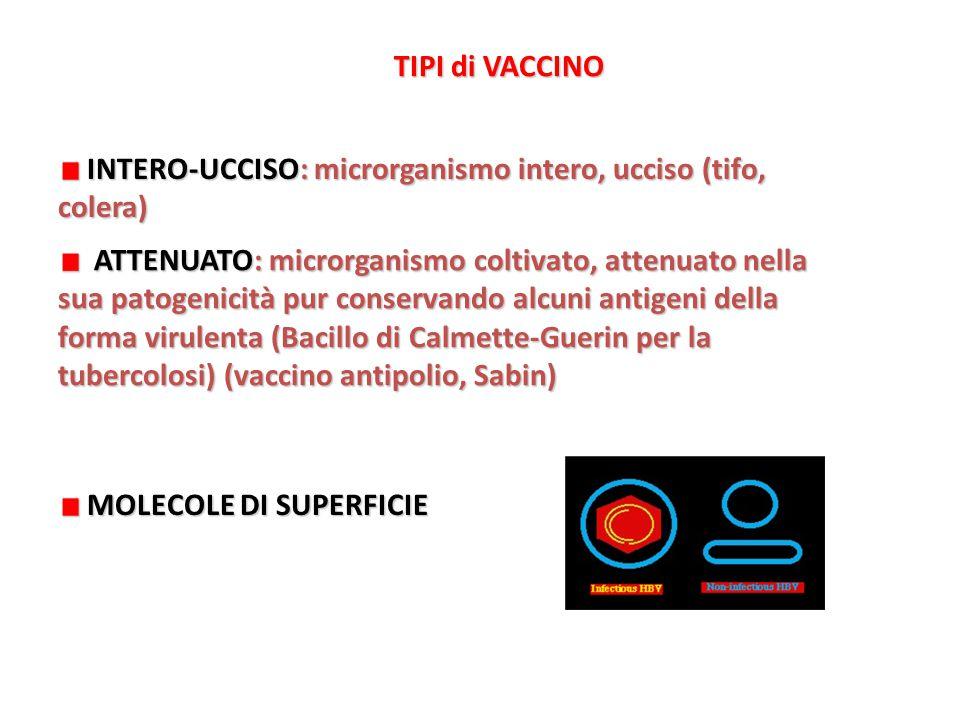 TIPI di VACCINO INTERO-UCCISO: microrganismo intero, ucciso (tifo, colera)