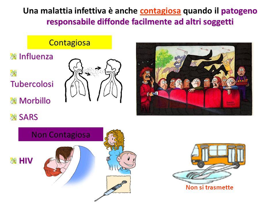 Una malattia infettiva è anche contagiosa quando il patogeno responsabile diffonde facilmente ad altri soggetti