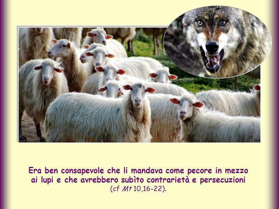 Era ben consapevole che li mandava come pecore in mezzo ai lupi e che avrebbero subìto contrarietà e persecuzioni (cf Mt 10,16-22).
