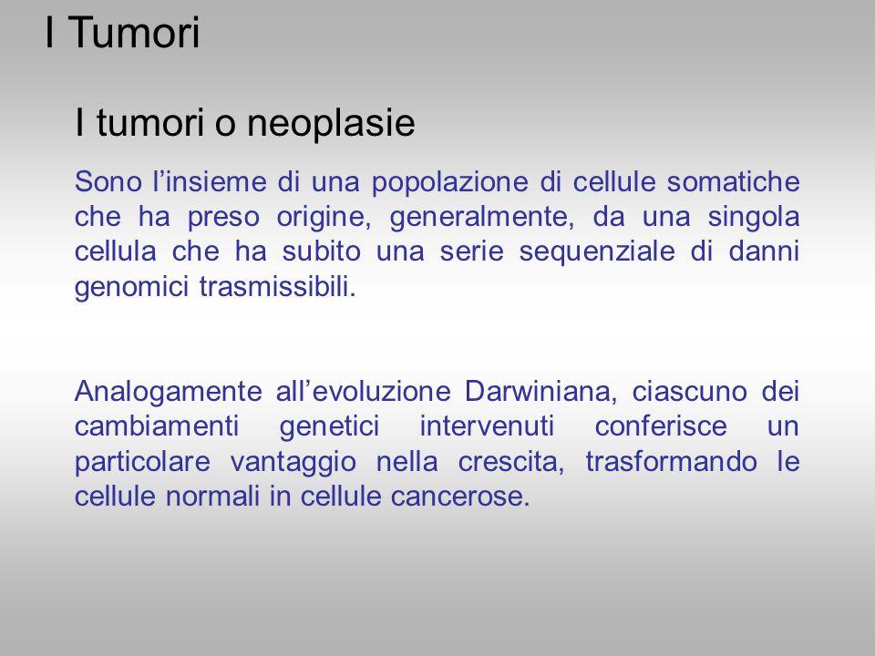 I Tumori I tumori o neoplasie