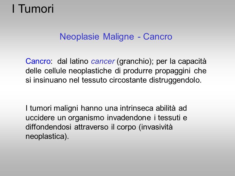 I Tumori Neoplasie Maligne - Cancro