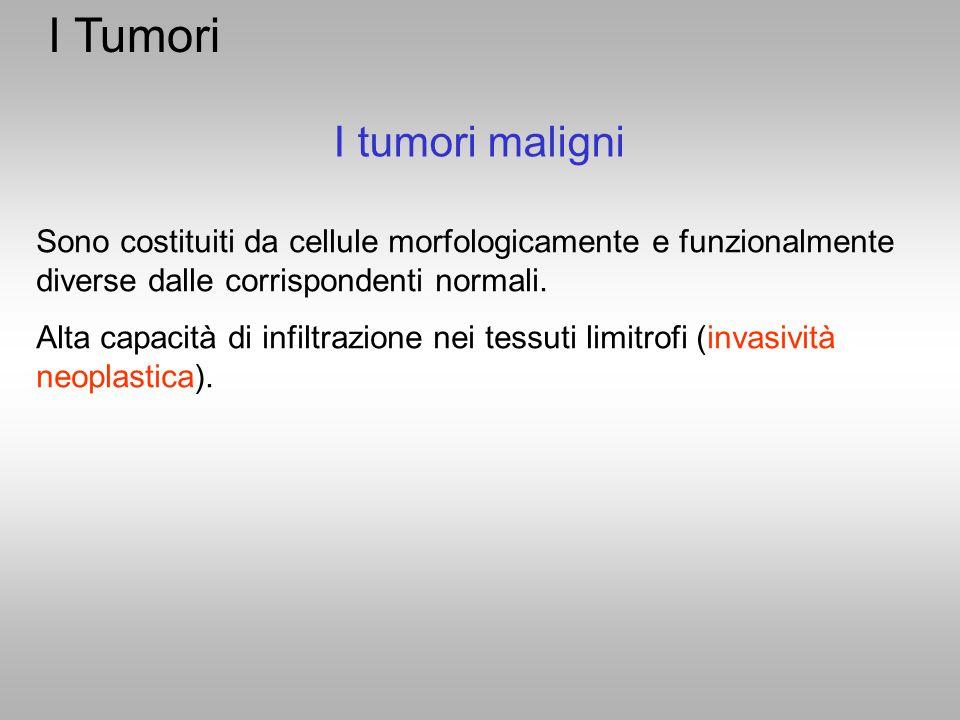 I Tumori I tumori maligni