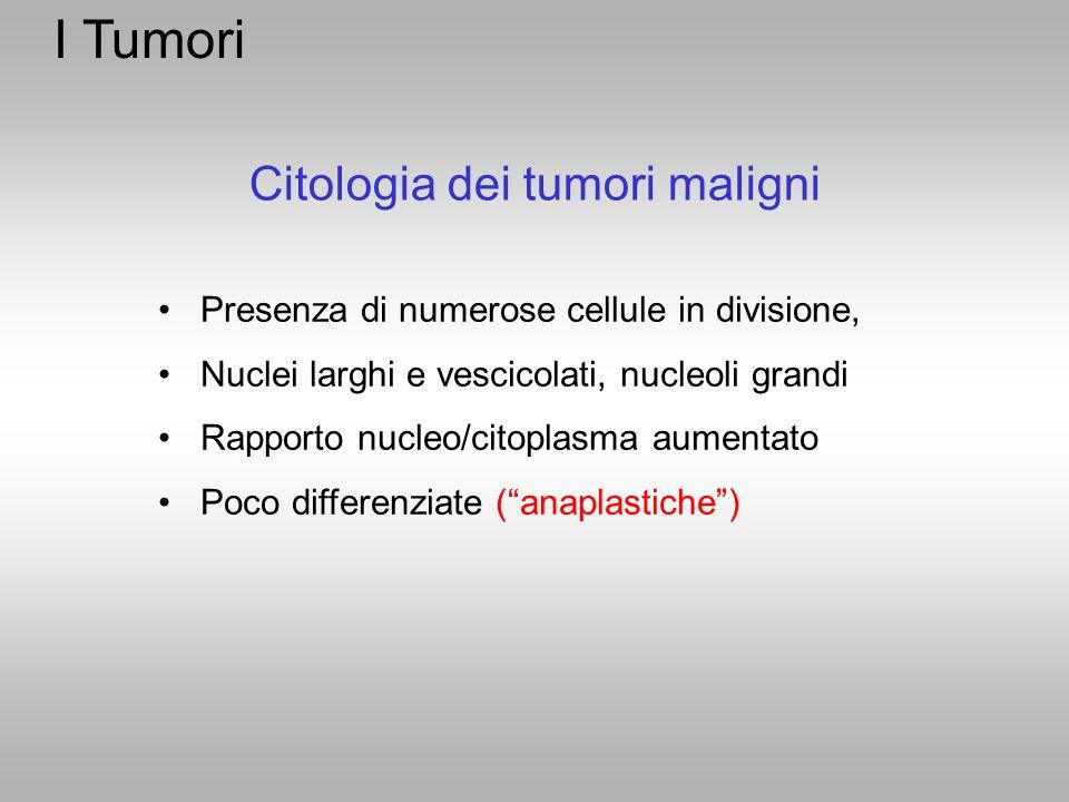 I Tumori Citologia dei tumori maligni