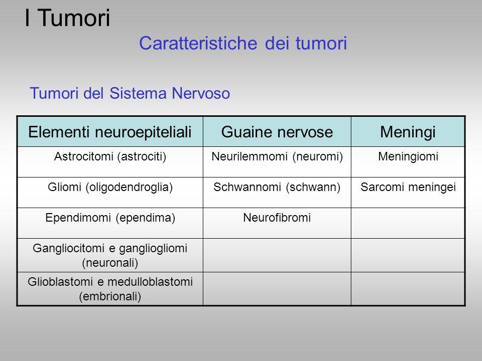 I Tumori Caratteristiche dei tumori Tumori del Sistema Nervoso
