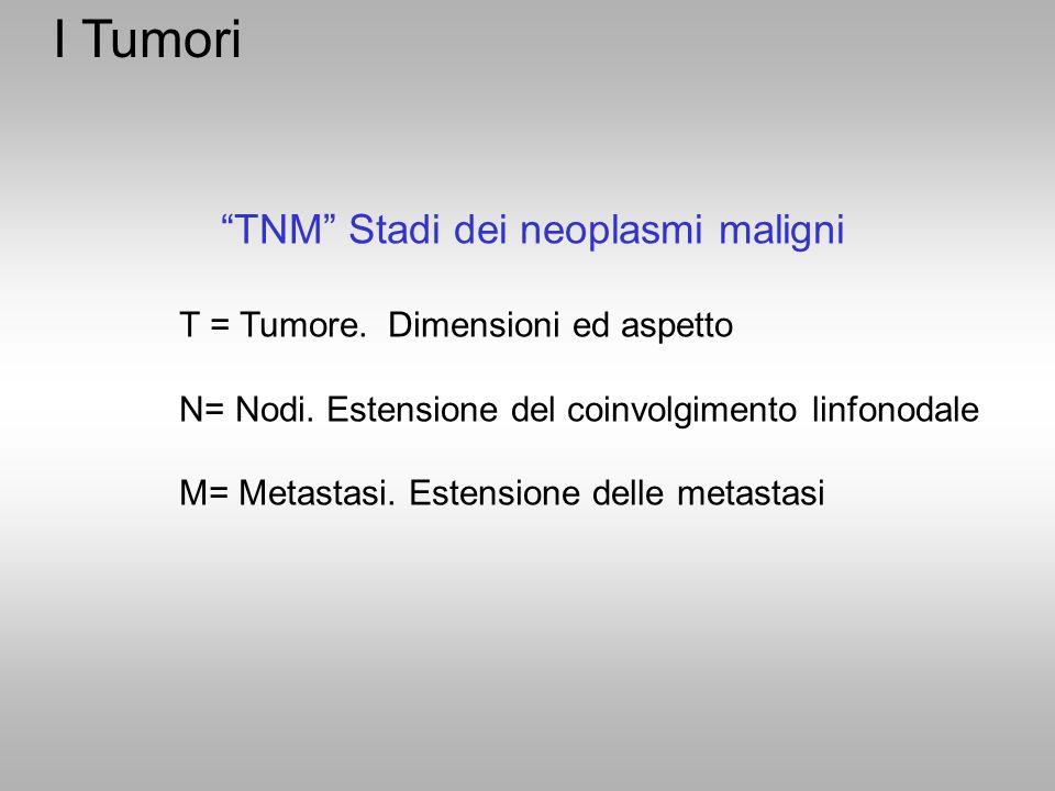 TNM Stadi dei neoplasmi maligni