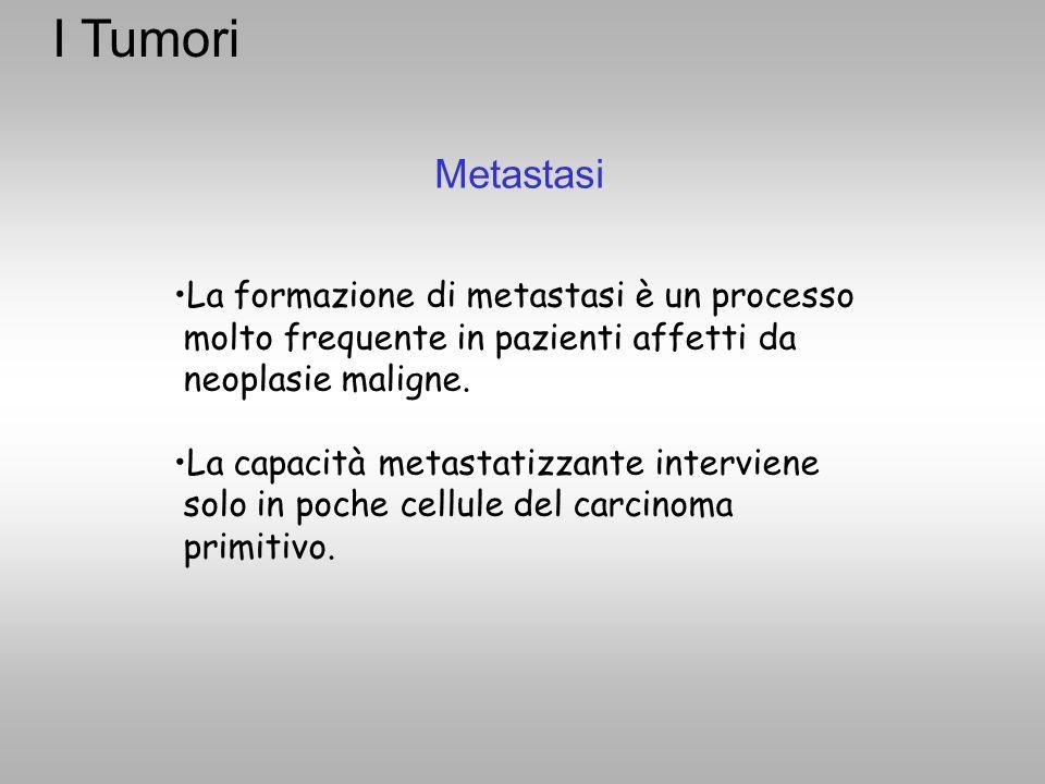 I Tumori Metastasi. La formazione di metastasi è un processo molto frequente in pazienti affetti da neoplasie maligne.
