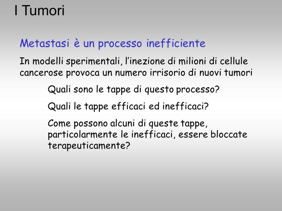 I Tumori Metastasi è un processo inefficiente