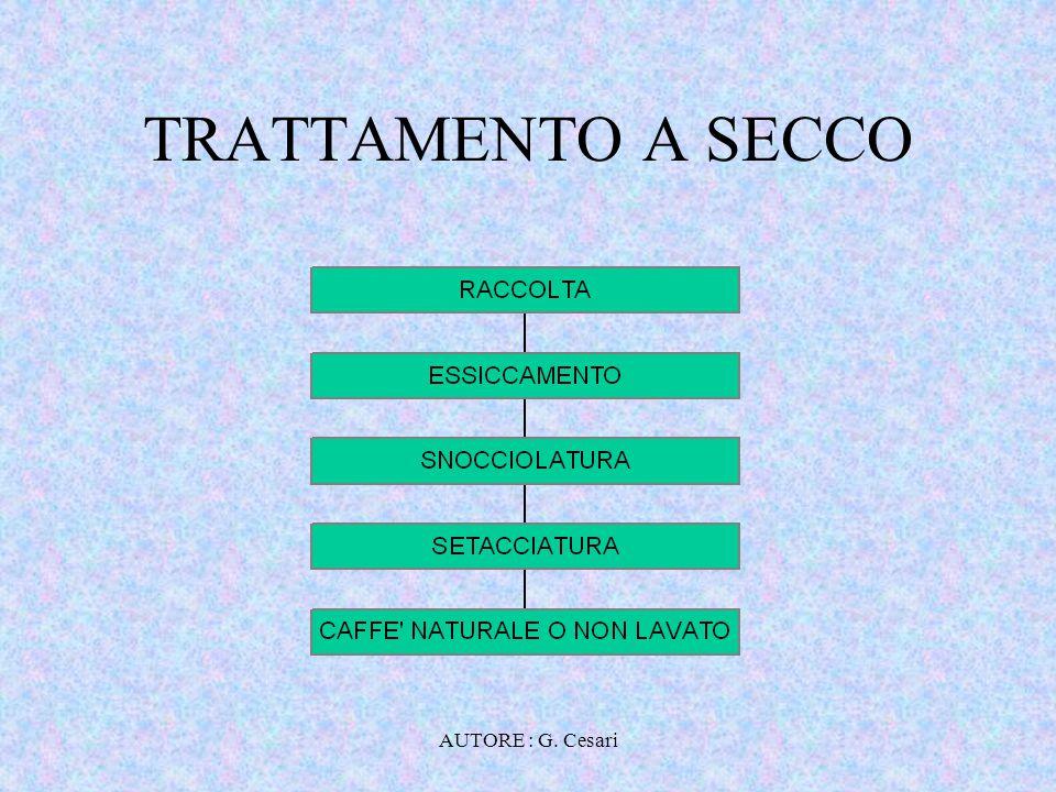 TRATTAMENTO A SECCO AUTORE : G. Cesari