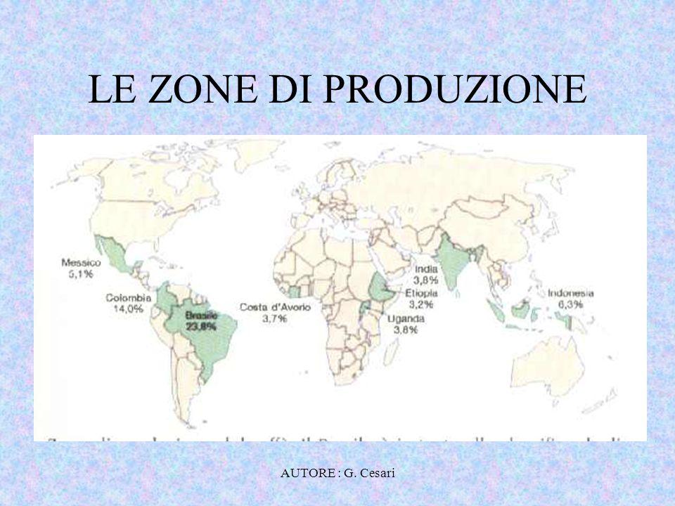 LE ZONE DI PRODUZIONE AUTORE : G. Cesari
