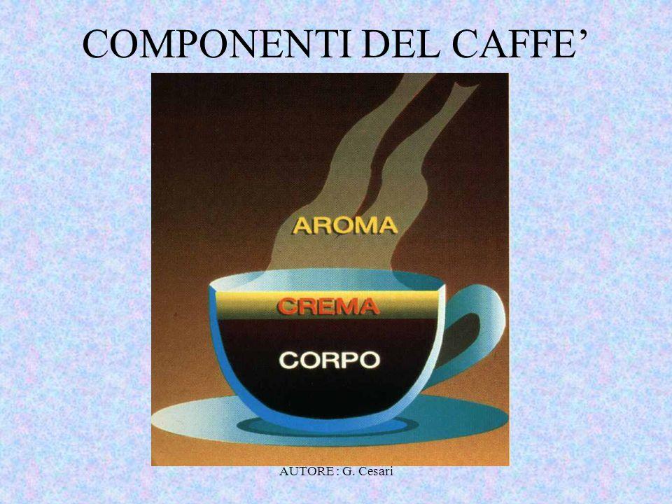 COMPONENTI DEL CAFFE' AUTORE : G. Cesari