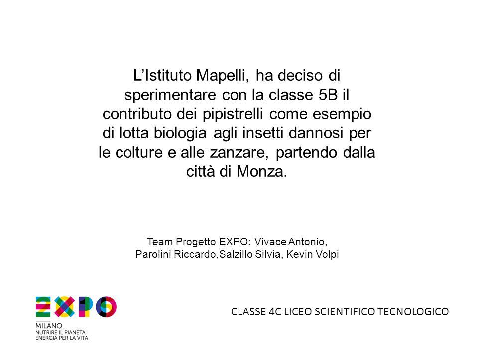 L'Istituto Mapelli, ha deciso di sperimentare con la classe 5B il contributo dei pipistrelli come esempio di lotta biologia agli insetti dannosi per le colture e alle zanzare, partendo dalla città di Monza.