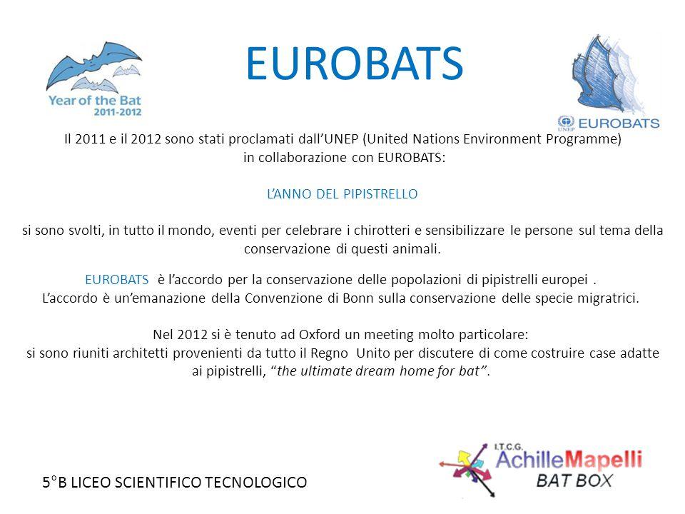 EUROBATS Il 2011 e il 2012 sono stati proclamati dall'UNEP (United Nations Environment Programme) in collaborazione con EUROBATS: