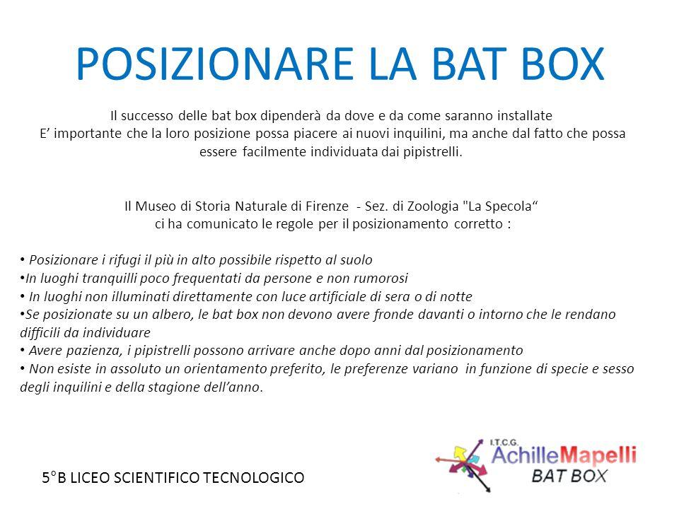 POSIZIONARE LA BAT BOX Il successo delle bat box dipenderà da dove e da come saranno installate.