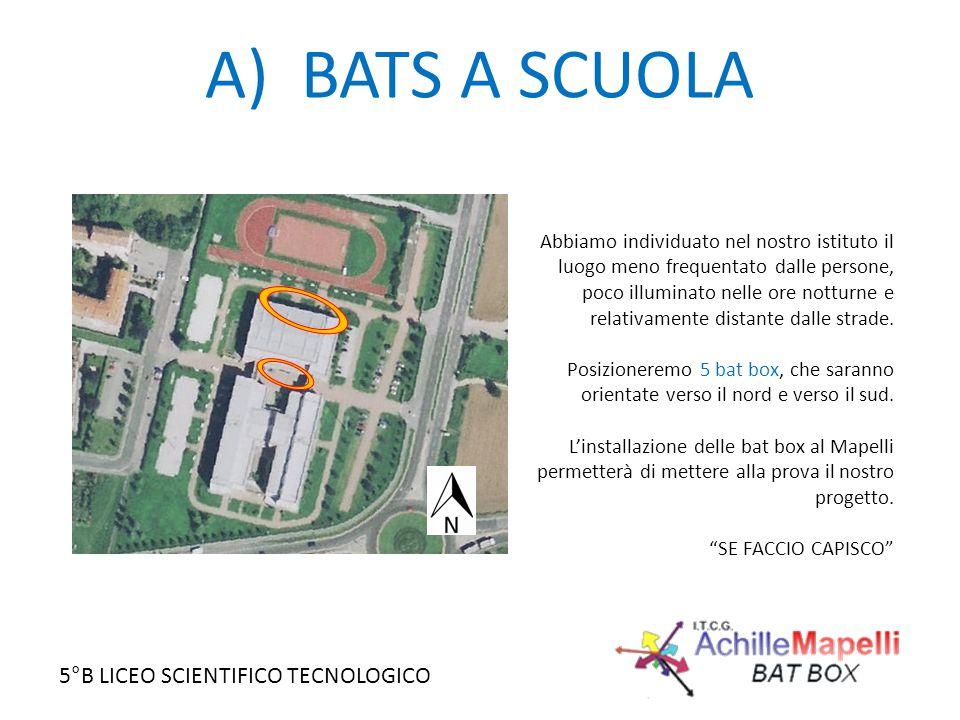 A) BATS A SCUOLA