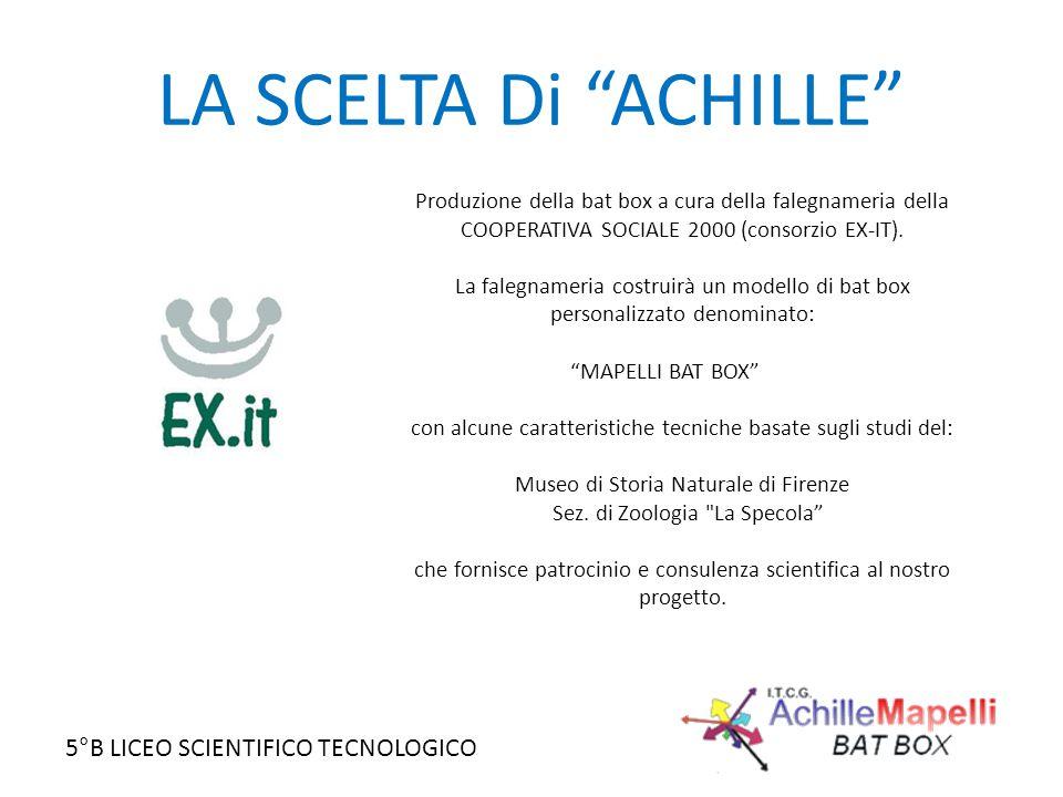 LA SCELTA Di ACHILLE Produzione della bat box a cura della falegnameria della COOPERATIVA SOCIALE 2000 (consorzio EX-IT).