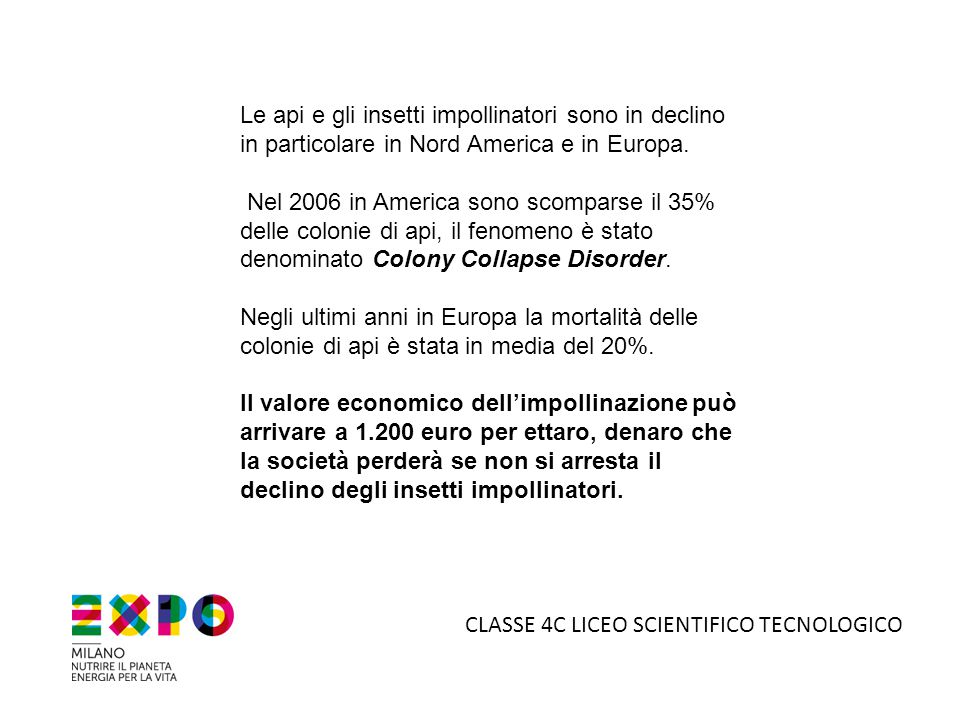 CLASSE 4C LICEO SCIENTIFICO TECNOLOGICO