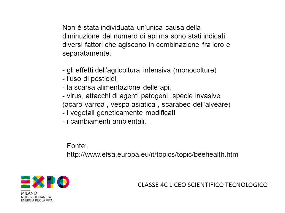 - gli effetti dell'agricoltura intensiva (monocolture)