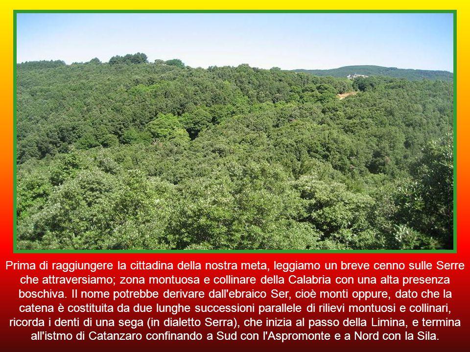 Prima di raggiungere la cittadina della nostra meta, leggiamo un breve cenno sulle Serre che attraversiamo; zona montuosa e collinare della Calabria con una alta presenza boschiva.