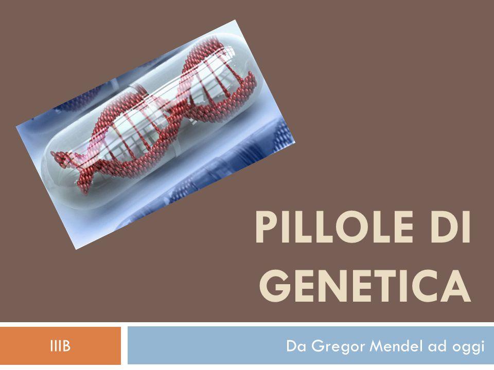 IIIB Da Gregor Mendel ad oggi