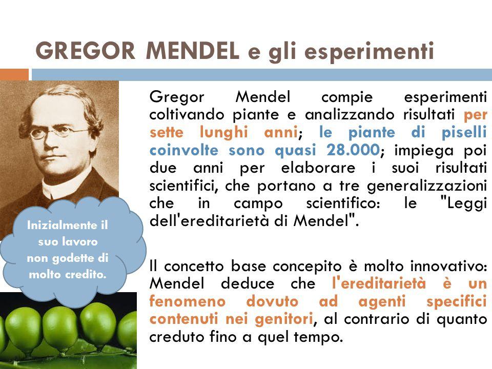 GREGOR MENDEL e gli esperimenti