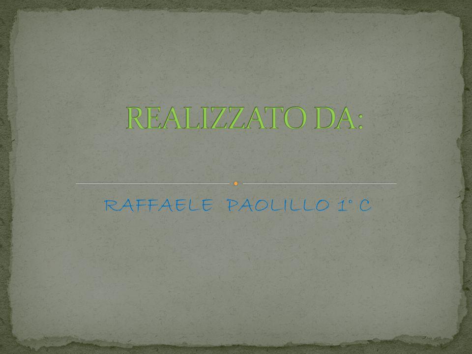 REALIZZATO DA: RAFFAELE PAOLILLO 1° C