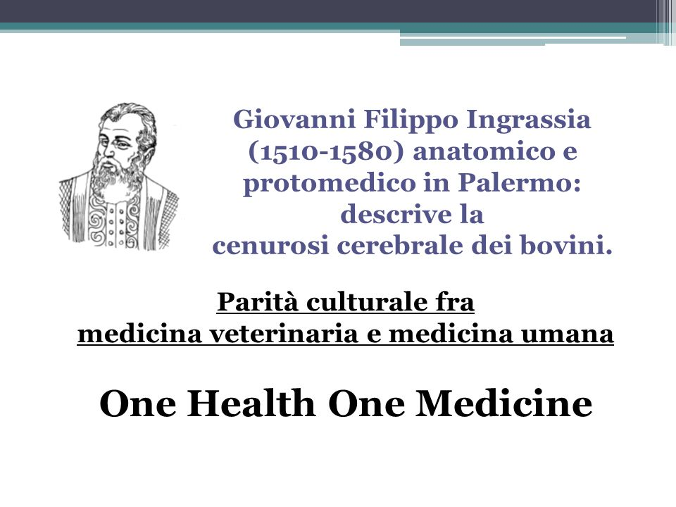 One Health One Medicine