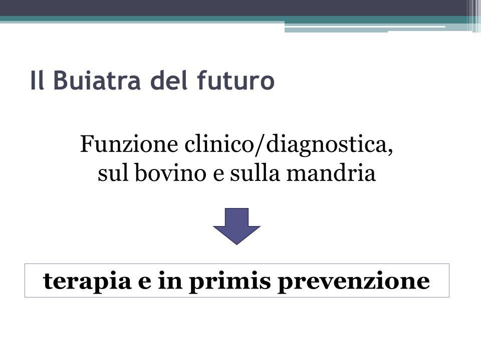 terapia e in primis prevenzione