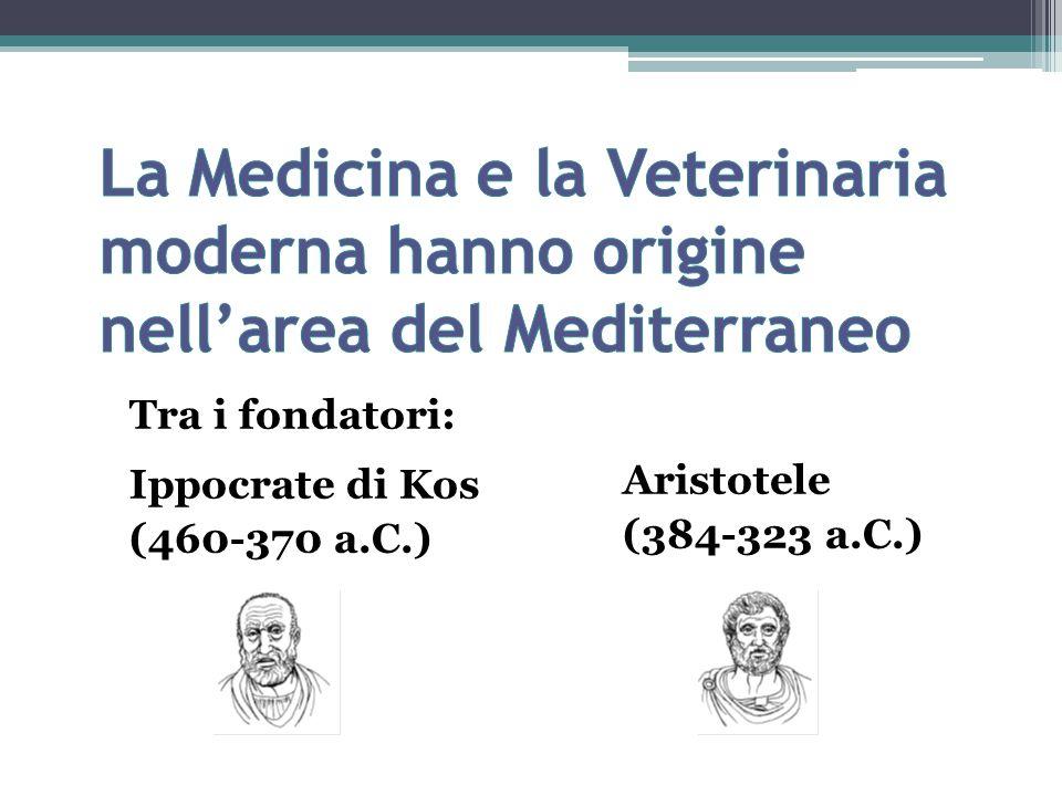 La Medicina e la Veterinaria moderna hanno origine nell'area del Mediterraneo