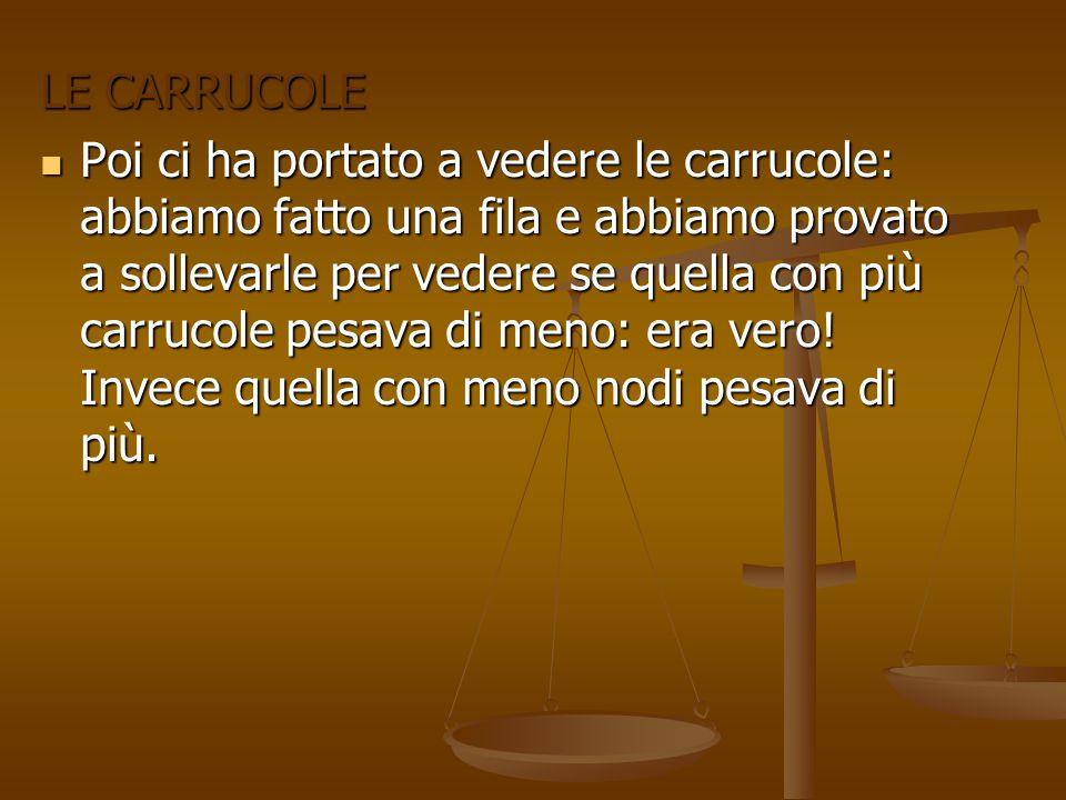 LE CARRUCOLE