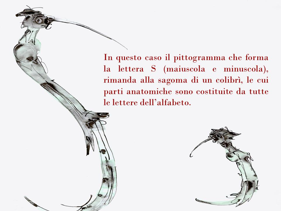 In questo caso il pittogramma che forma la lettera S (maiuscola e minuscola), rimanda alla sagoma di un colibrì, le cui parti anatomiche sono costituite da tutte le lettere dell'alfabeto.