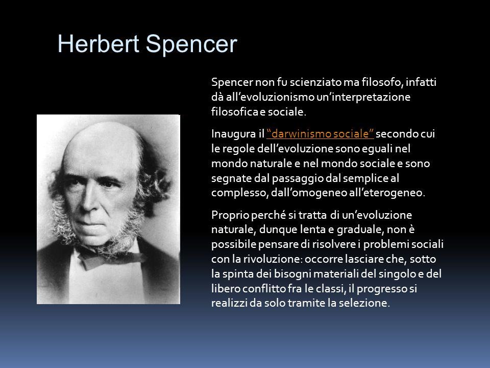 Herbert Spencer Spencer non fu scienziato ma filosofo, infatti dà all'evoluzionismo un'interpretazione filosofica e sociale.