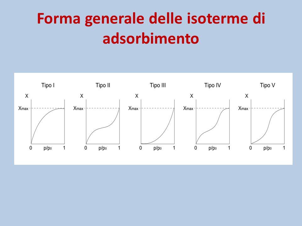 Forma generale delle isoterme di adsorbimento