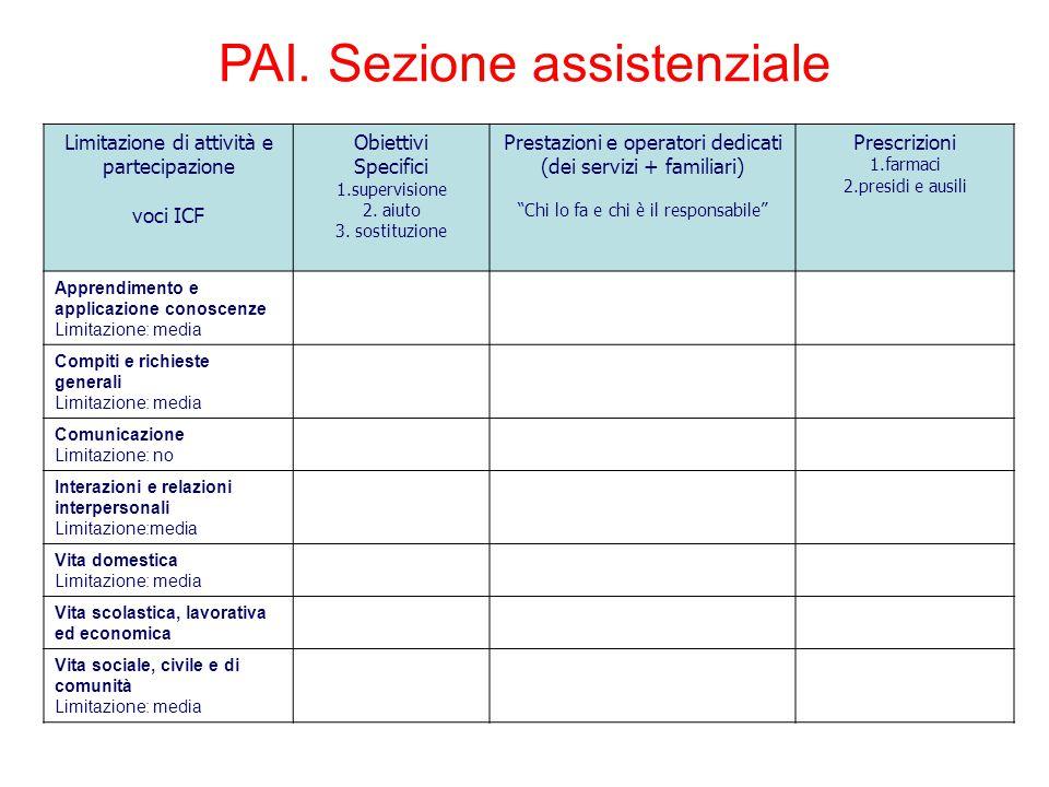 PAI. Sezione assistenziale