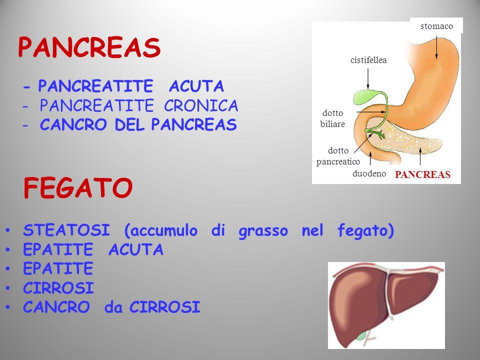 PANCREAS FEGATO - PANCREATITE ACUTA PANCREATITE CRONICA