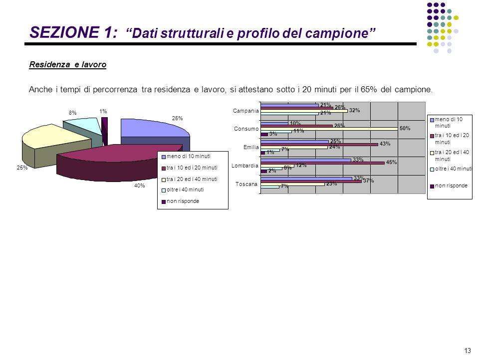 SEZIONE 1: Dati strutturali e profilo del campione