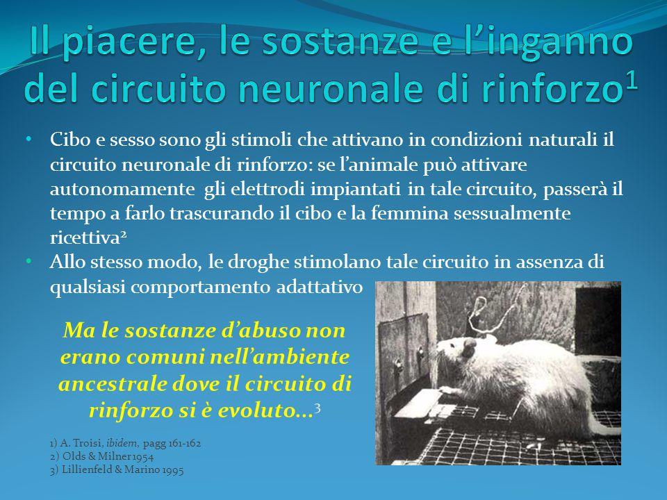 Il piacere, le sostanze e l'inganno del circuito neuronale di rinforzo1