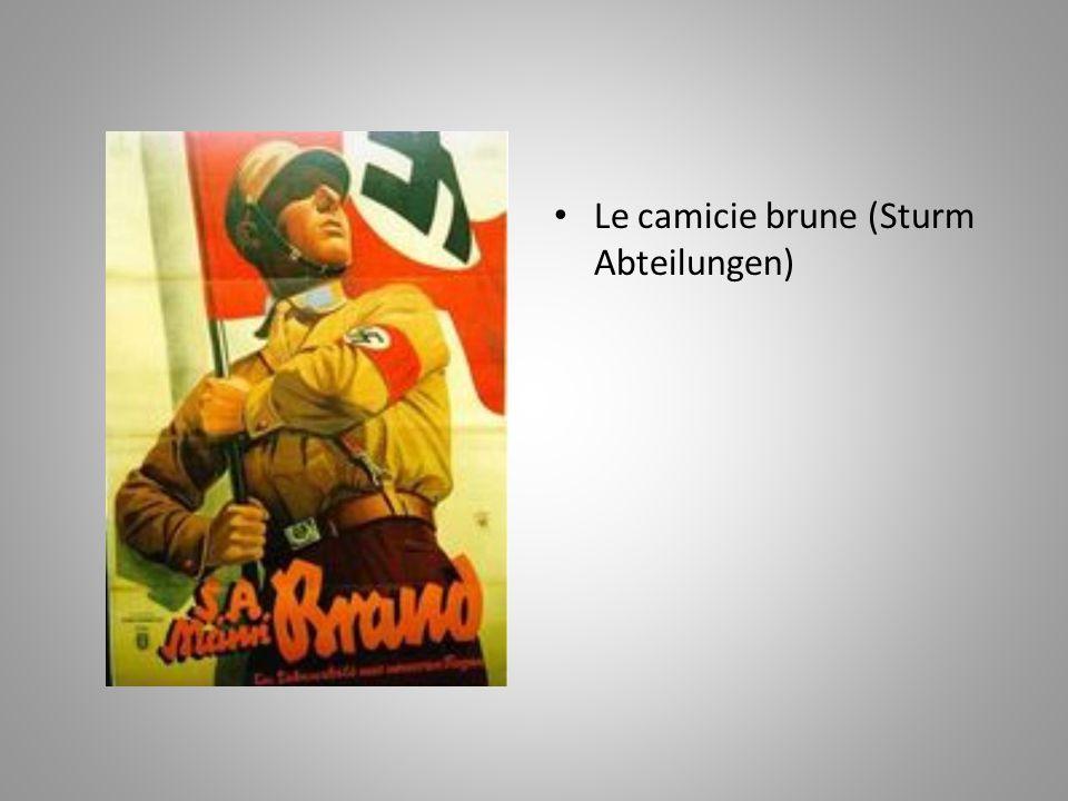 Le camicie brune (Sturm Abteilungen)
