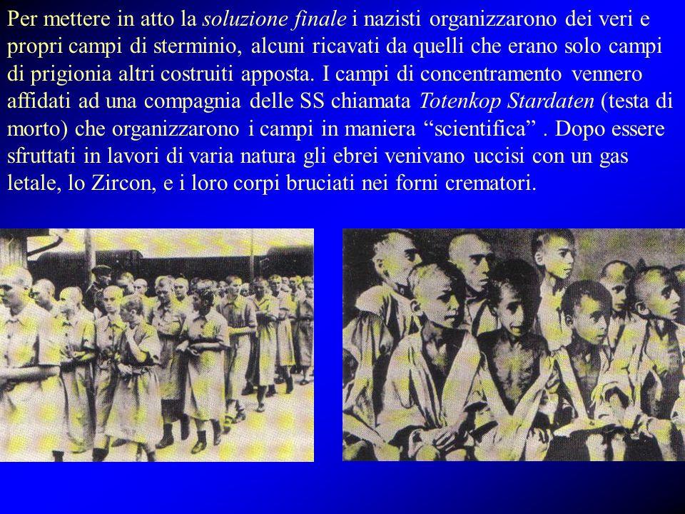 Per mettere in atto la soluzione finale i nazisti organizzarono dei veri e propri campi di sterminio, alcuni ricavati da quelli che erano solo campi di prigionia altri costruiti apposta.