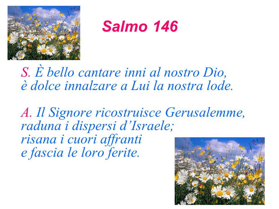 Salmo 146