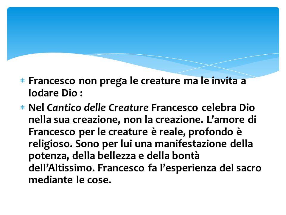 Francesco non prega le creature ma le invita a lodare Dio :