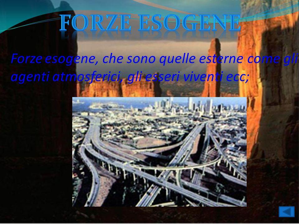 Forze esogene Forze esogene, che sono quelle esterne come gli agenti atmosferici, gli esseri viventi ecc;