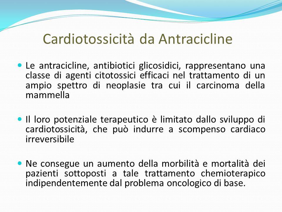 Cardiotossicità da Antracicline